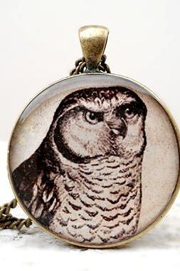 Vintage Owl necklace, Ivory Dark Brown Pendant, Harry potter necklace,Wholesale