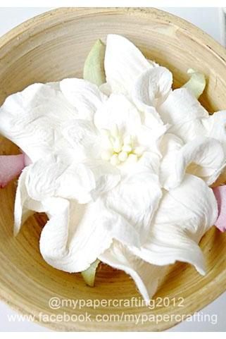 2 Gardenia Big paper flower white / pack