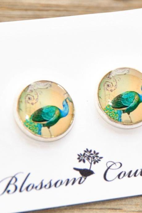 Pretty Peacocks Resin Silver Post Earrings