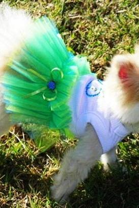 Blue and Green Dog TuTu Seaside Wedding Dog Clothes Whale Miascloset